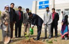 Tree Plantation Activity Organized by School of Politics and International Relations